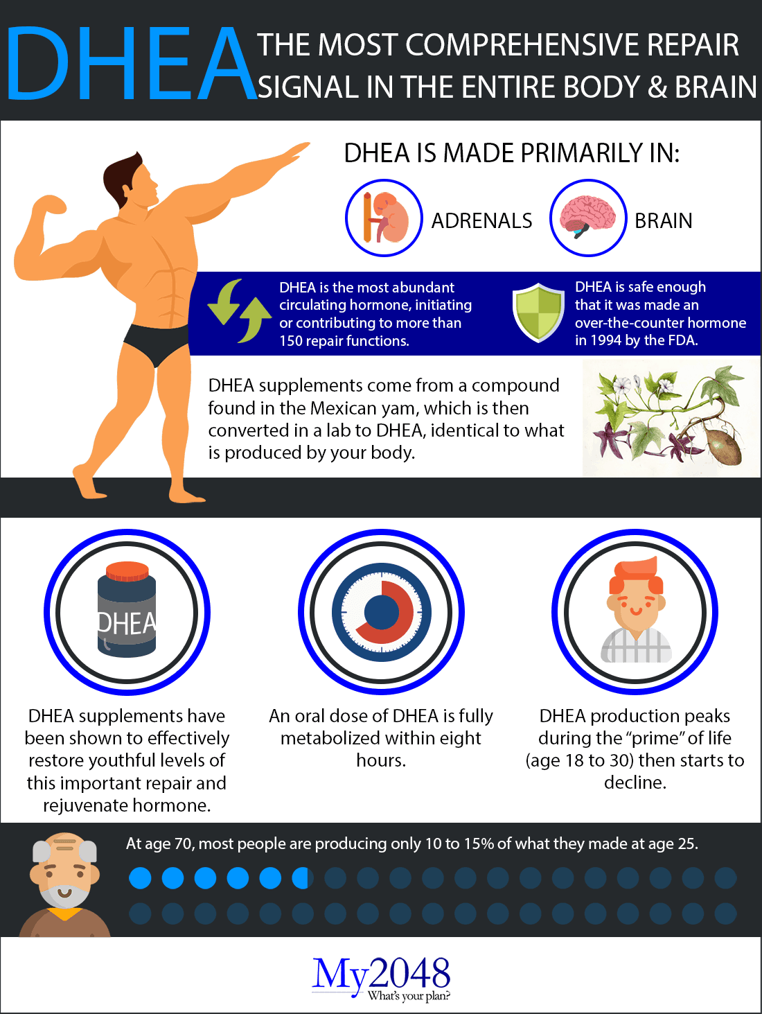 DHEA for men / DHEA for women infographic