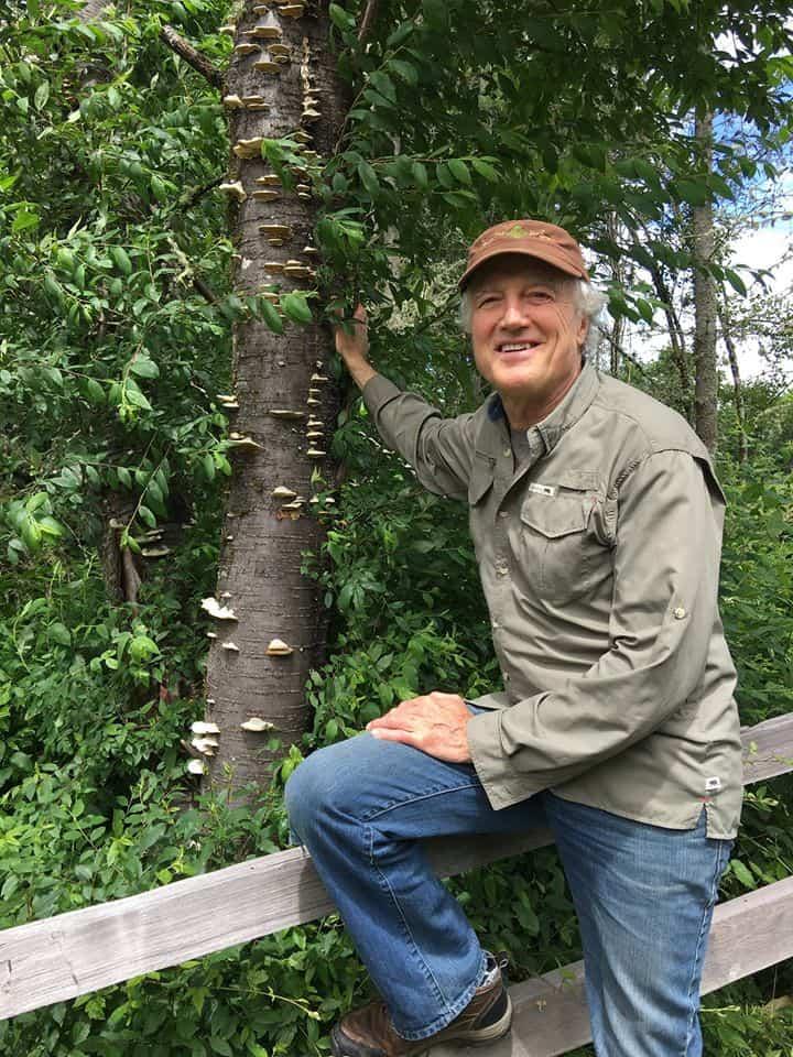 Immunity Deep Dive Part-5 Medicinal Mushrooms